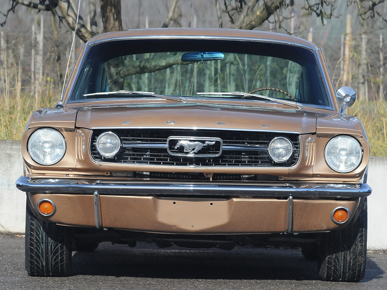 Dodge ford plymouth muscle cars autozeitung de