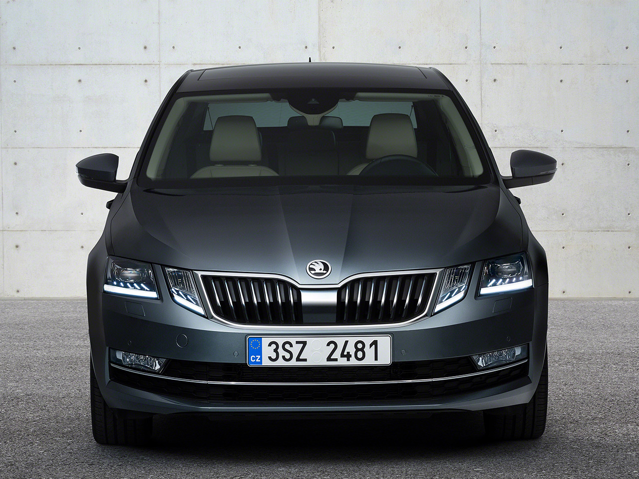 skoda octavia facelift 2017 preis update. Black Bedroom Furniture Sets. Home Design Ideas