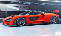1. Platz McLaren Senna 14,2 % (Importwertung)