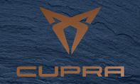 Best New Brand: Cupra