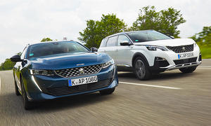 Peugeot 508 SW/Peugeot 5008: Vergleichstest