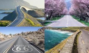 Roadtrip-Umfrage