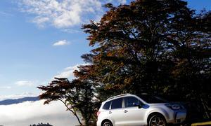 Subaru Forester 2013 Preise Ausstattung Boxer Allrad