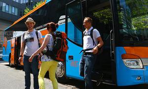 Fernbus-Statistik 2013 Angebot Nachfrage Linien Fahrer