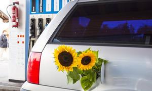 Biosprit Kraftstoff E10 Deutschland Resonanz Treibstoff