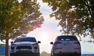 Audi Q5 3.0 TDI clean diesel quattro Porsche Macan S Diesel 2014 Kompakt-SUV Vergleichstest