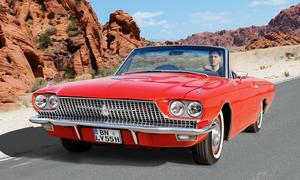 Ford Thunderbird Cabriolet Fahrbericht technische Daten Bilder