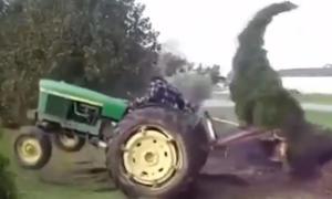 Video: Traktorfahrer gegen Zypresse