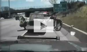Ausraster bei Polizeikontrolle: Video