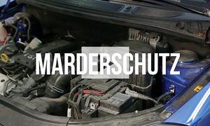 Marderschreck für's Auto: Video