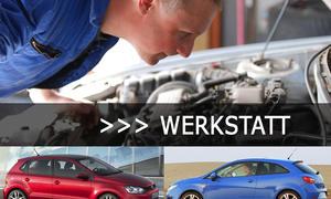 Rückruf VW-Skandal