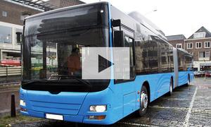 Verhalten an Bushaltestellen: Video