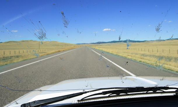 Insektenentferner fürs Auto: Test