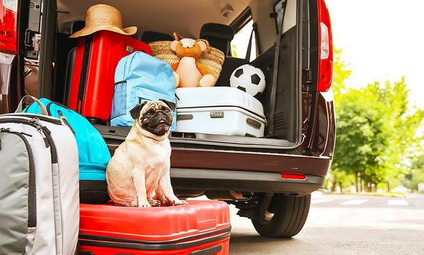 Sommerurlaub mit dem Auto