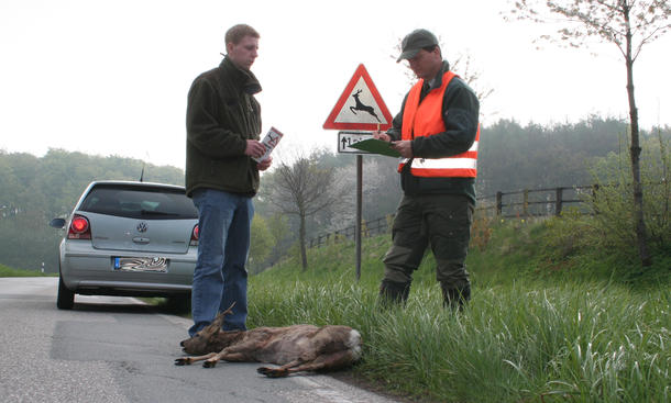 Wildunfall Sicherheit Tiere ADAC Massnahmen Jagdverband