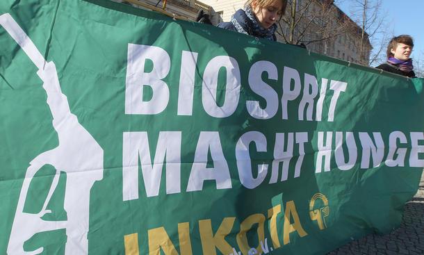 biosprit kraftstoff reform 2015 EU Umweltausschuss