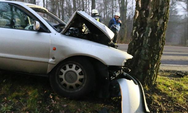Unfall-Statistik Baum-Unfälle Auto Bäume Allee Verkehrstote